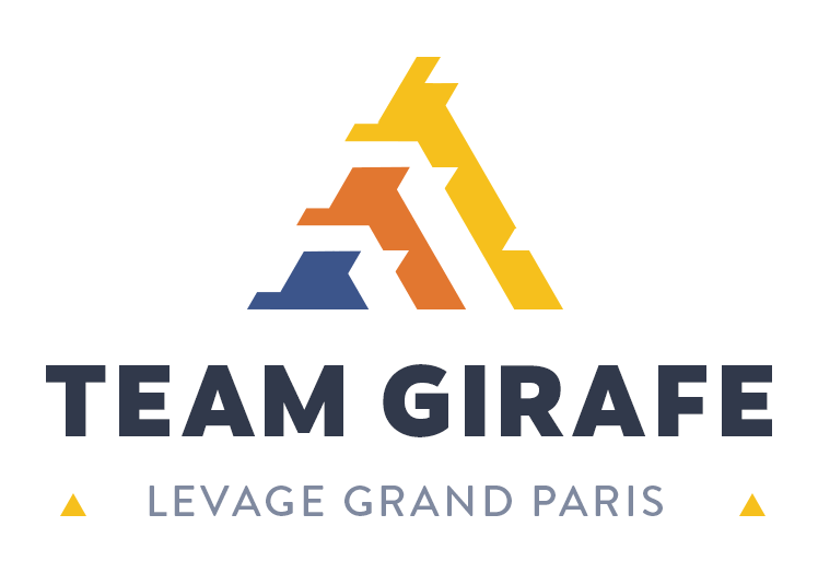 logo - Team Girafe